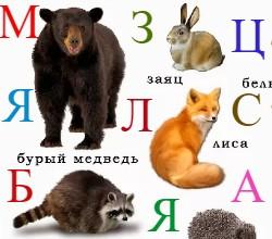 Алфавит про зверей