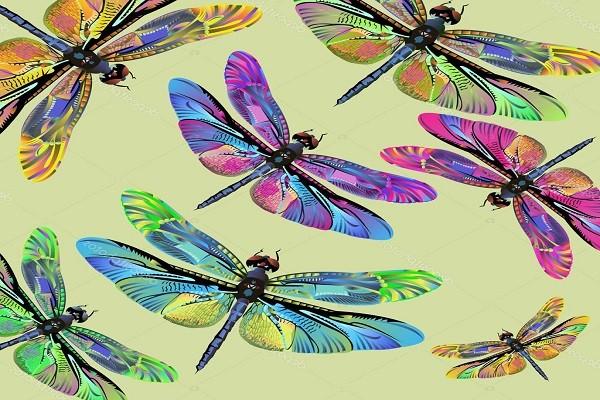 Иллюстрации:фотографии  разноцветных стрекоз Азбука загадка
