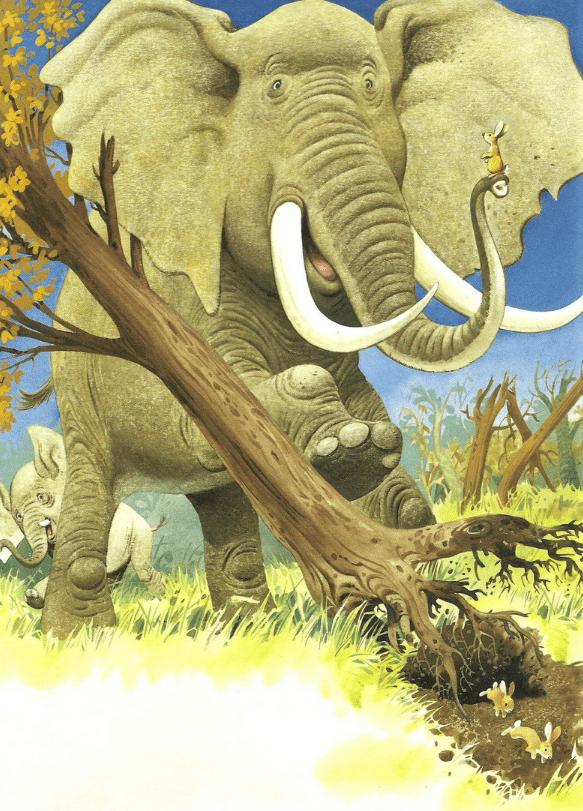 Однажды слон Юфф повалил большое дерево. Просто так, от избытка силы. Дерево подвернулось слону на пути, а обойти его стороной Юфф не захотел.