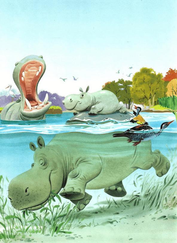 Однажды бегемот Ваавау, почти до ушей погрузившись в прозрачные воды реки Чиумбе, недовольно бурчал: — Вот незадача, лопни ты или тресни!