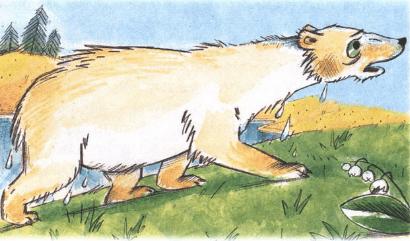 — Спасайтесь! — закричал верблюд. — Это белый медведь. Он заблудился. Бродит тут и ругает какого-то Виктора Перестукина. Спасайтесь!