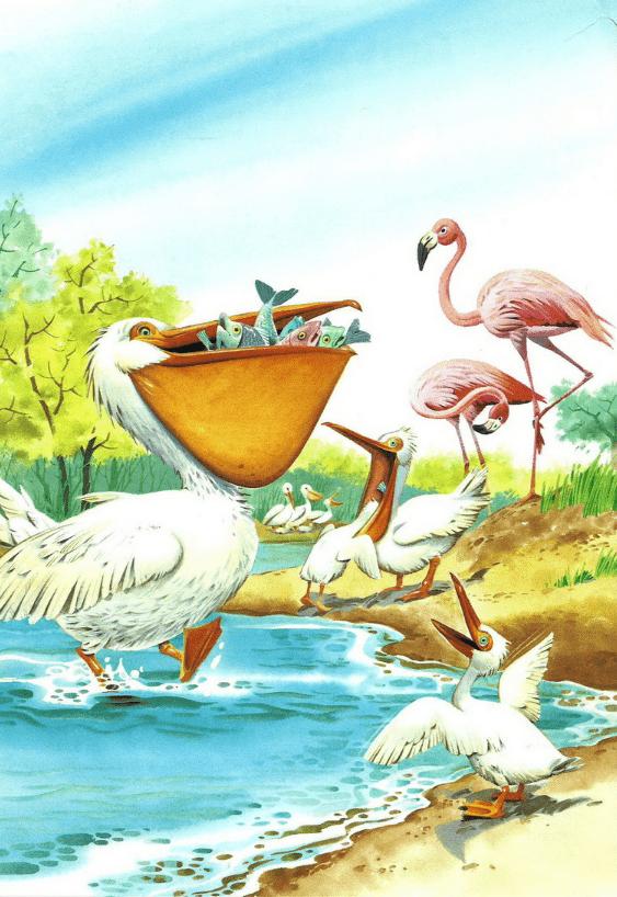 Однажды в Африке случилась вот такая история. На реке Чиумбе жил пеликан Ле. С утра и до вечера пеликан ловил рыбу. Он эту рыбу почти и не ел, а всё больше в огромный мешок под клювом складывал.